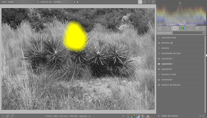 Captura de pantalla de 2021-09-25 18-26-22